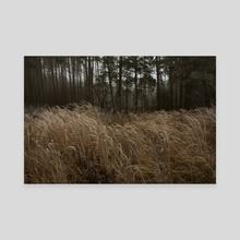 ANDREY  KOLOSOV Russian landscape Photo 32 - Canvas by Andrey Kolosov