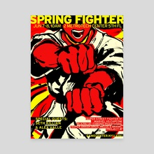 Spring Fighter 2014 - Canvas by rvsa
