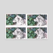 Dog Frames - Canvas by Sarah Oh